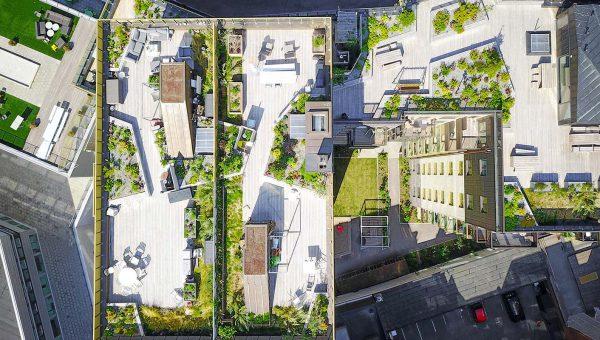 Byggnader med trädgårdar på taket, bild fotad uppifrån