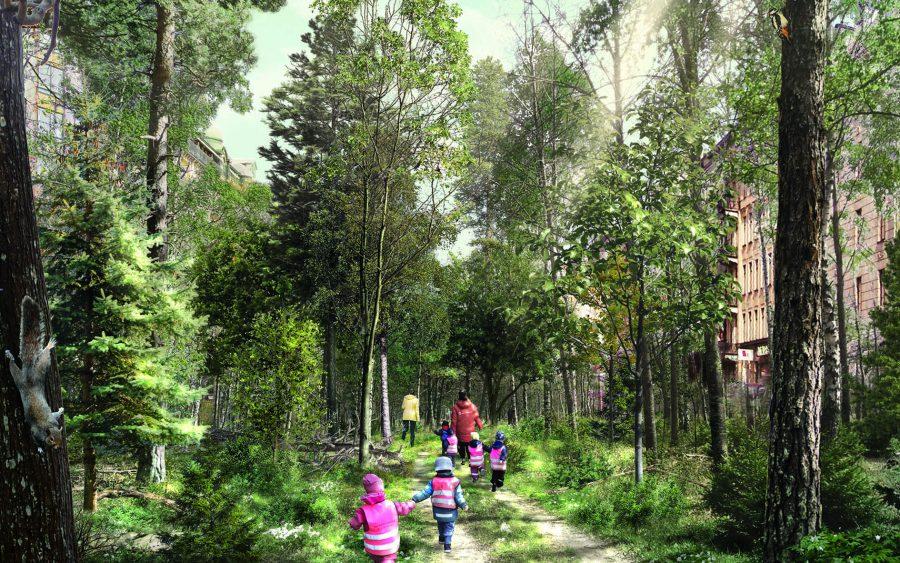 Barn som rör sig en lövskog, solen silar ner genom träden